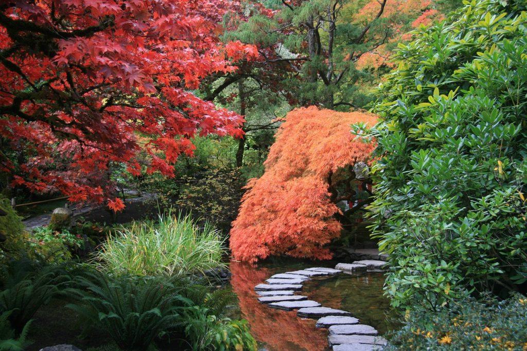 Feng Shui Gartengestaltung - Japanischer Garten