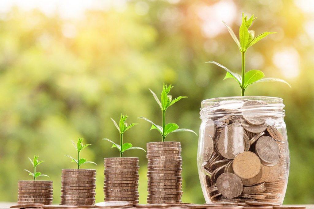 Feng Shui Individual Analyse - Wachstum Reichtum und Fülle