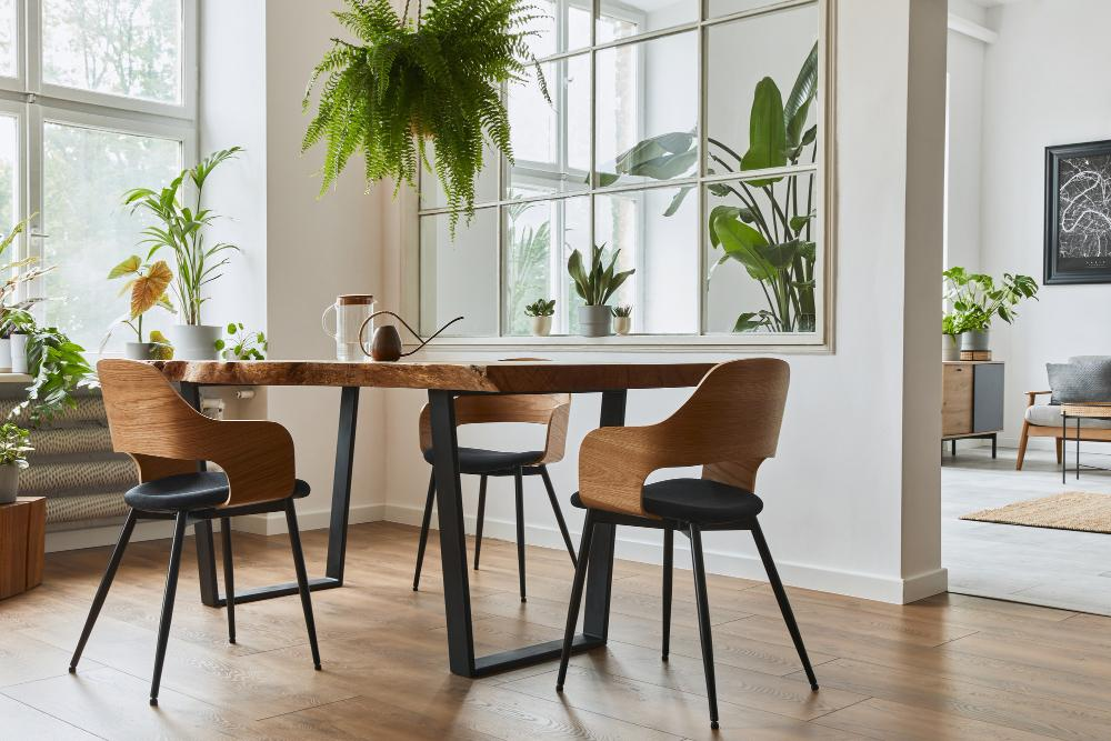 Feng Shui Clearing im Startup